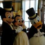ディズニーで結婚式~フェアリーテイルウェディング~