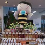 ぶんぶんファクトリー山田養蜂場直営店のハチミツアイス in 鏡野町
