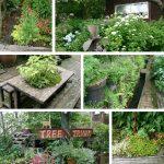 TreeTrunk(ツリートランク)広いお庭☆花とネコとカフェ♪ in 津山市