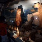 ナイトミュージアム(科学博物館:つやま自然のふしぎ館)in津山市