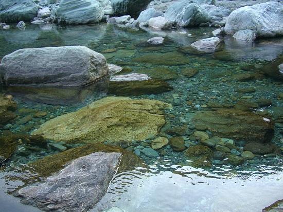 石鎚山の麓加茂川の清流と青石