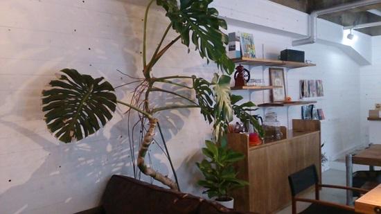 Globe cafe(グローブカフェ)の店内