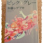 現役ジャニーズNEWSの加藤シゲアキさんが書いた小説「ピンクとグレー」