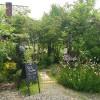 ロッキーガーデン~お庭がキレイなカフェ in 美作市
