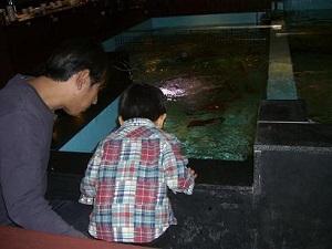 海陽亭の生簀で魚釣り