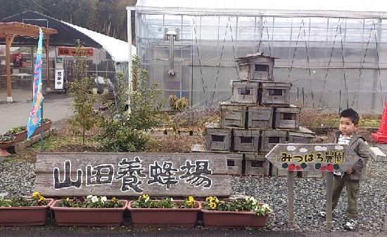 山田養蜂場「みつばち農園」