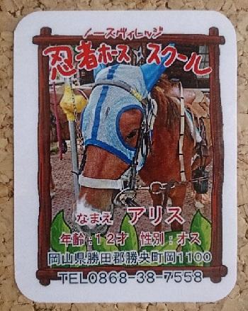 「ノースヴィレッジ」忍者ホーススクール馬カード