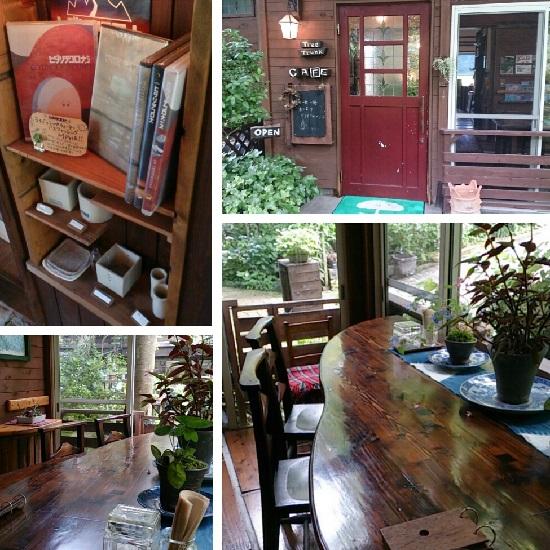 TreeTrunk(ツリートランク)のカフェ店内