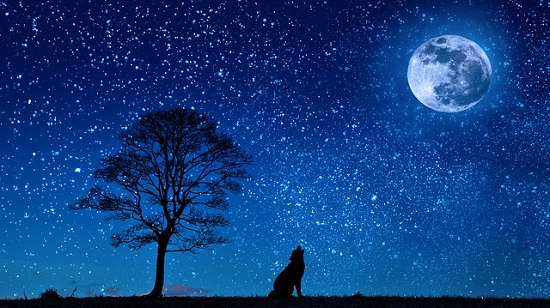 満点の星空と満月
