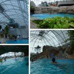 グラスハウス1年中泳げる温水プール(グリーンヒルズ津山) in 岡山県