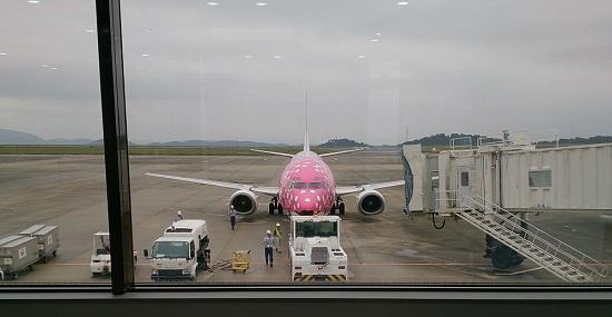 JALのピンクのジンベイザメ飛行機