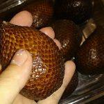 ヘビ柄の南国フルーツSalacca(サラク)を食べてみた