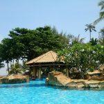トカゲと一緒に泊まるなら~ビンタン島のニルワナビーチクラブ