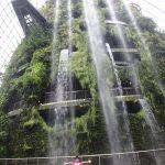 ガーデンズバイザベイで無料のイルミネーション~シンガポールセントーサ島