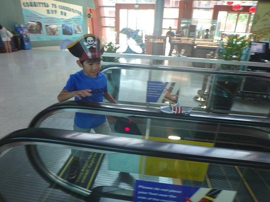 シーアクアリウム(シンガポール)水族館のエスカレーター