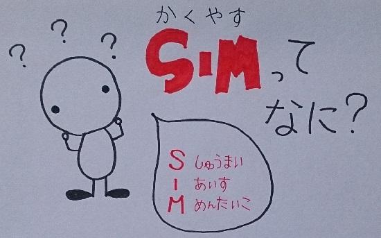 格安SIMって何?