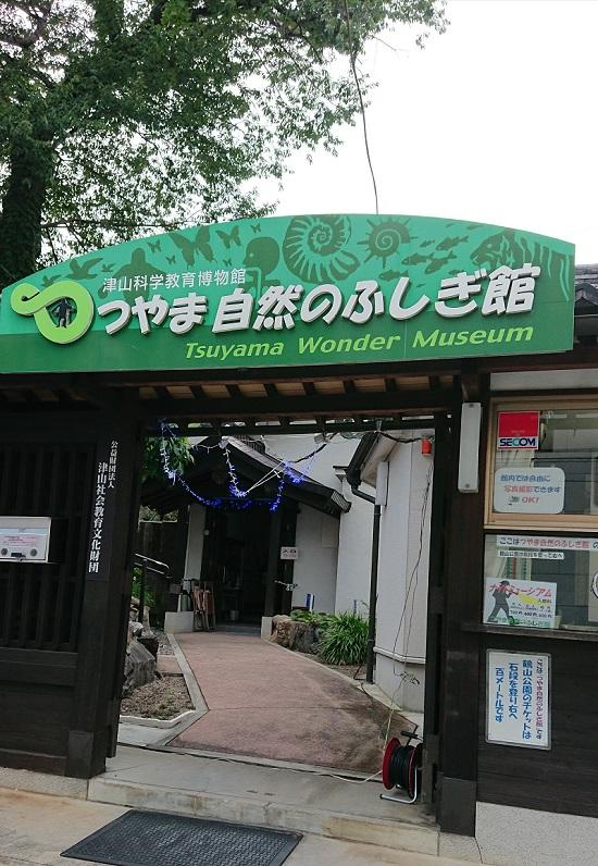 科学博物館:つやま自然のふしぎ館