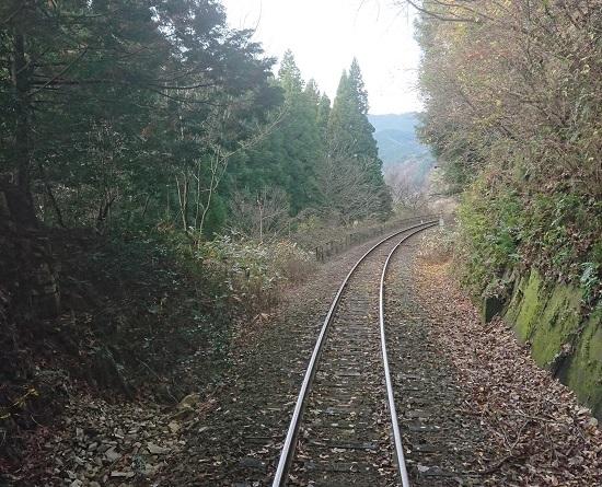 列車が倒木と接触した後の線路