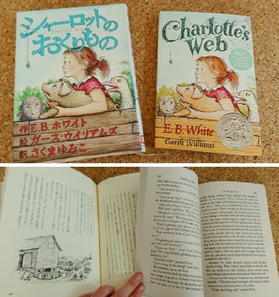 子供英会話教材シャーロットのおくりもの(Charlotte's Web)