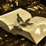 多読(英語学習法)の効果と本の選び方