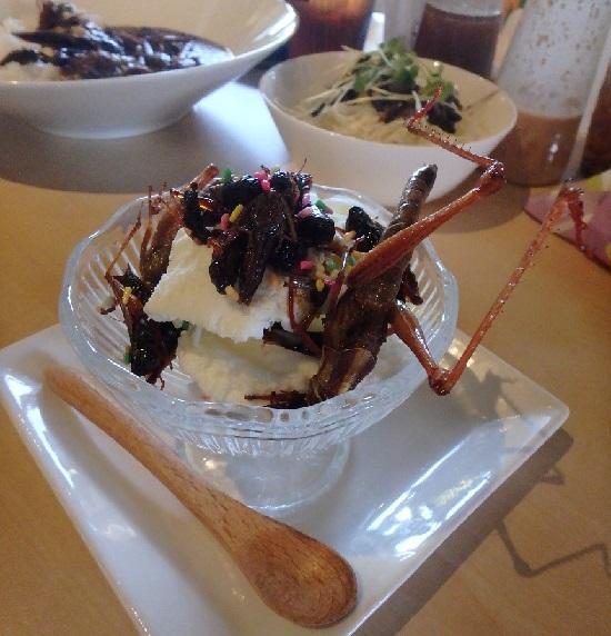 爬虫類カフェ「爬虫れぼ」のデザート昆虫アイスクリーム