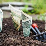 楽天証券に口座を開設するまでの流れ~お金をかけない投資に挑戦!