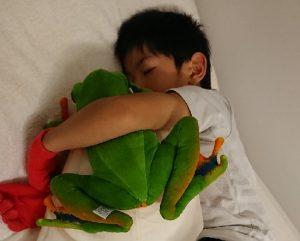 カエルのぬいぐるみと子供
