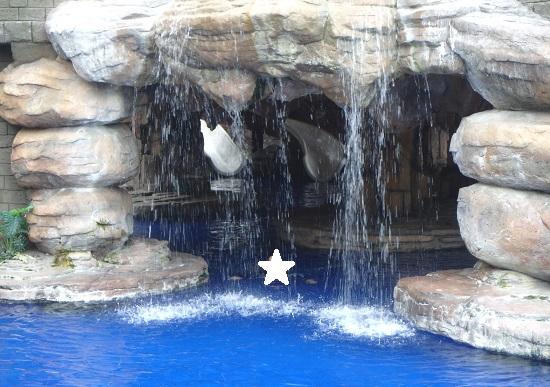 セブ ウェスタンラグーン(Cebu Westown Lagoon)ドラゴンプールの滝