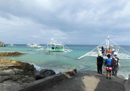 モアルボアル(セブ島)海がめツアー