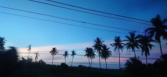 フィリピンセブ島の海岸線の風景