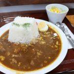 津山駅近くでモーニング&ランチ「Cafe Kakuzan」でインスタ映えカレー