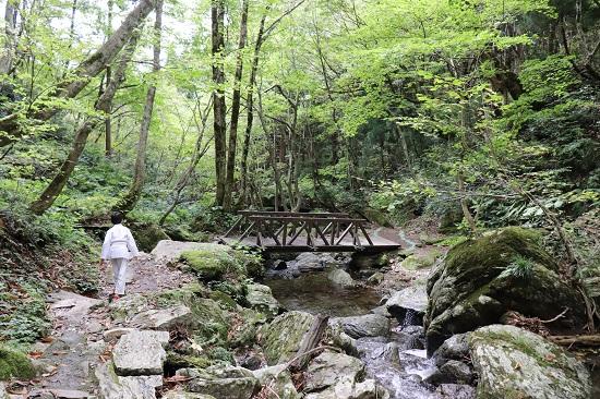 鏡野町(上齋原村)の岩井滝(裏見滝)