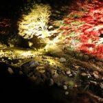 奥津渓と甌穴群~岡山県の紅葉スポット【鏡野町(旧奥津町)】