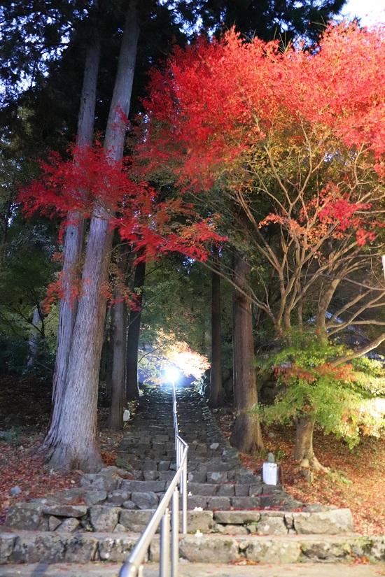 奈義町「菩提寺」の参道