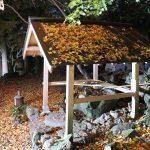 菩提寺の大イチョウ~岡山県の紅葉スポット【奈義町】