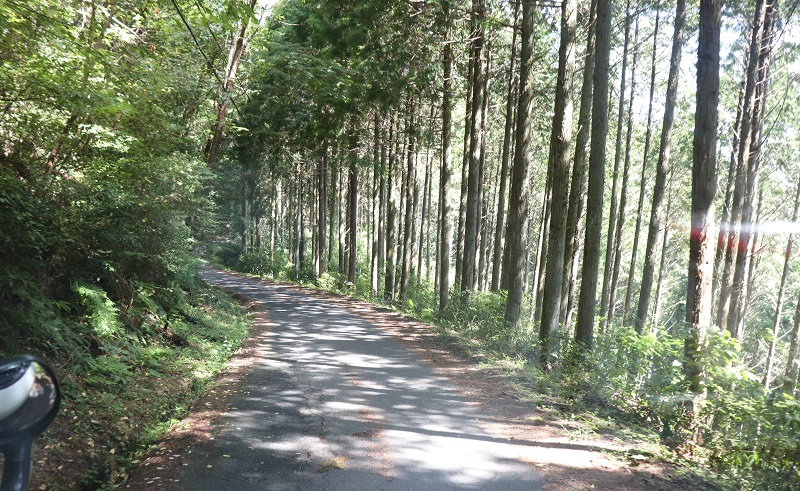 UEDA VILLAGE(ウエダ ヴィレッジ)までの道のり