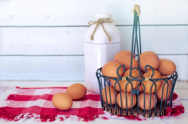 卵(eggs)