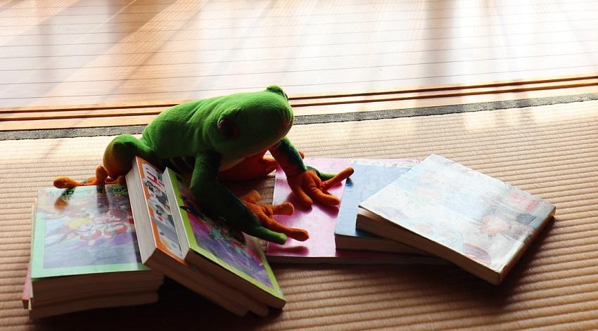 縁側で読書(本を読む)
