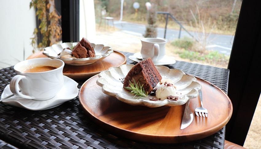 ホシメグリ「チョコレートシフォンケーキ」