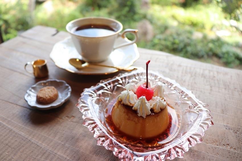 CAFEいきもの舎デザート(プリン)