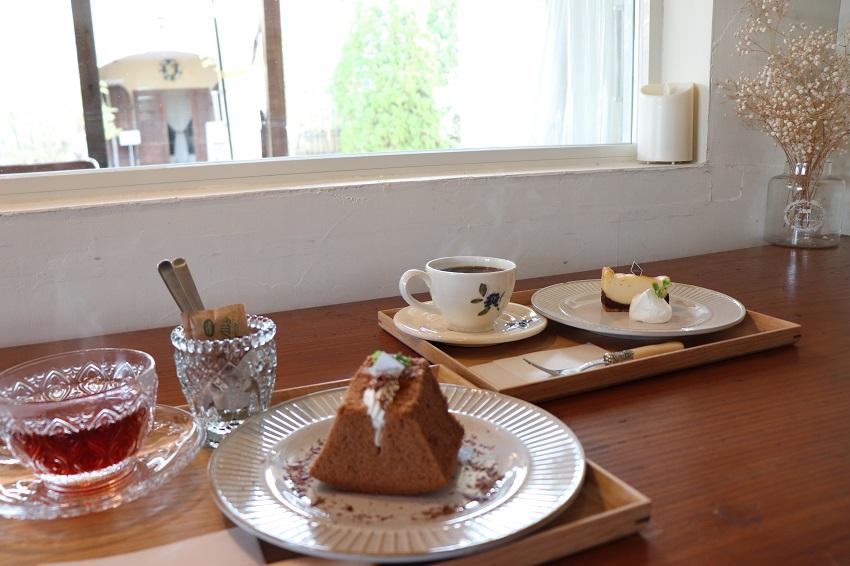 PrimaLivro(プリマリブロ)ケーキ